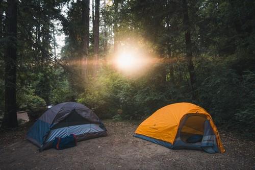 tents in woods